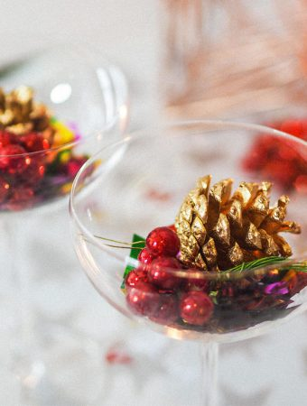 RachelNicole_Blogger_Influencer_ProCookChampagneSaucers_Christmas